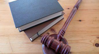 Diritto ambientale: gli sbocchi per un neolaureato