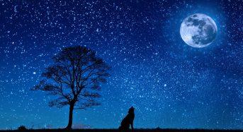 Ultima superluna del 2020, stasera sarà anche rossa