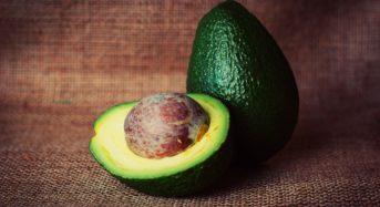 Avocado, frutto amico della nostra salute