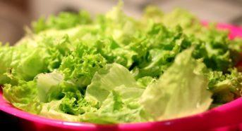 L'insalata e i benefici che apporta all'intestino